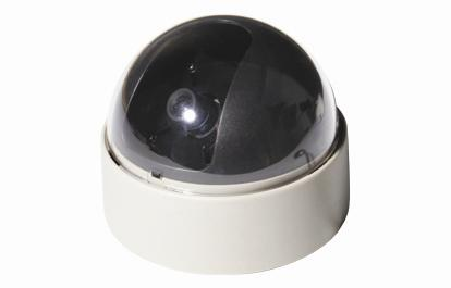 "1/3"" Color Sony Super HAD CCD Dome Camera -8mm lens DO5450"